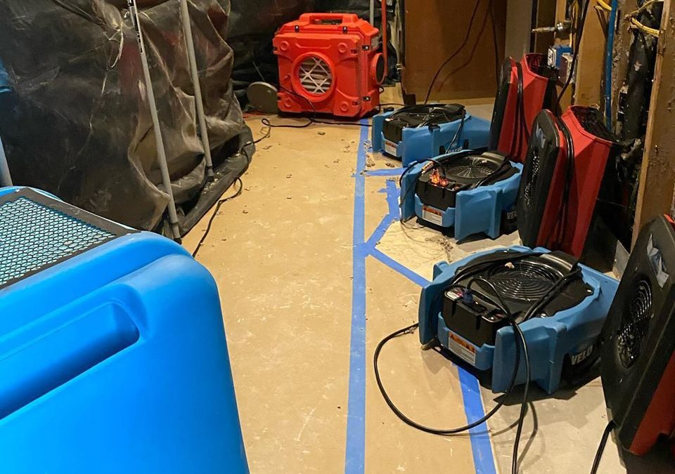 Goodyear, AZ: Water Damage